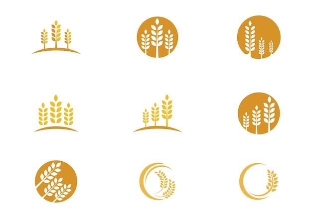 Rolnictwo pszenicy logo szablon wektor ikona projektu