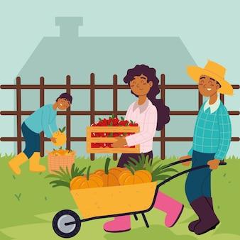 Rolnicy trzymają jedzenie owoców