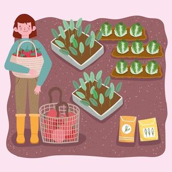 Rolnik chłopiec trzyma kosz z pomidorami plantacji kapusty i nasion ilustracji