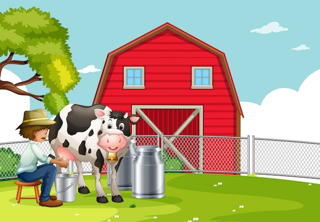 Rolnik dojenia krowy