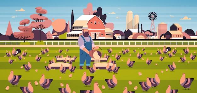 Rolnik płci męskiej karmiący kurczaki i koguty chów z wybiegiem hodowla żywopłotów na farmie drobiu pole uprawne krajobraz wsi