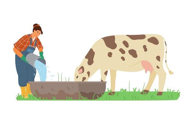 Rolnik pracujący kobieta nalewa wodę do ilustracji krowy.