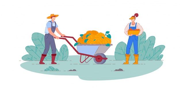 Rolnik zbierający dynie. rolnik mężczyzna i kobieta ludzie postaci z kreskówek z dyni zbierają w wózku taczkowym gospodarstwa i skrzynce do zbioru upraw warzyw. rolnictwo, rolnictwo
