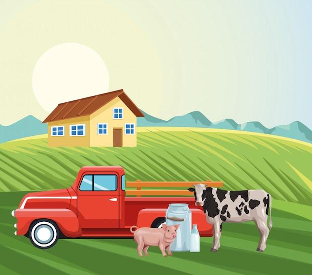 Rolny dom pickup ciągnik krowa świnia mleko kanister pola krajobraz