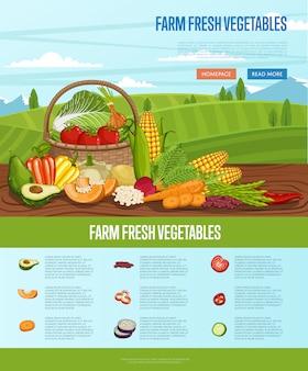 Rolny świeży warzywo sztandar z wiejskim krajobrazem