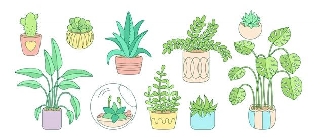 Roślin i sukulentów, doniczkowe ceramiczne kreskówka doodle zestaw linii. kolor liniowy dom mieszkanie kwiat kryty. rośliny domowe, kaktus, monstera, doniczka z aloesu. kolekcja wystroju wnętrz. ilustracja