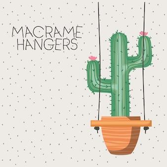 Roślina doniczkowa cactus w wieszakach makramy