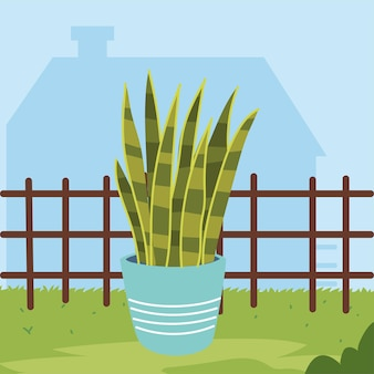 Roślina doniczkowa i ogrodzenie
