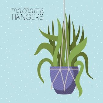Roślina doniczkowa w wieszakach makramy