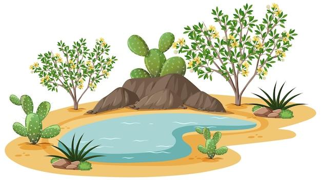 Roślina krzewu kreozotowego na dzikiej pustyni