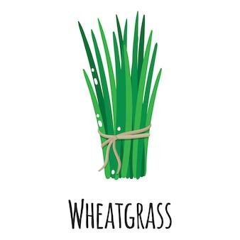 Roślina superfood z trawy pszenicznej do projektowania, etykietowania i pakowania szablonów na rynku rolników. naturalna żywność ekologiczna z białkami energetycznymi.