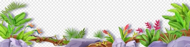 Roślina tropikalna z liści dżungli