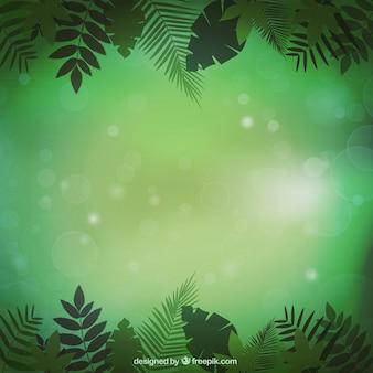 Roślinność dżungli tle