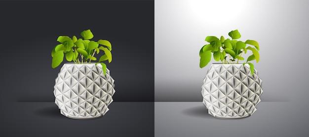 Rośliny domowe realistyczna biała ściana wewnętrzna ilustracja