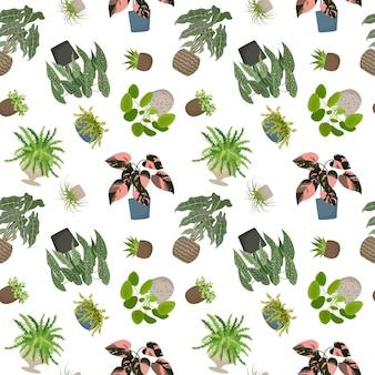 Rośliny domowe wzór kwiaty w doniczce wektor ilustracja na białym tle