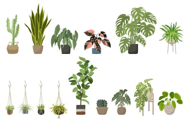 Rośliny domowe zestaw stojak na doniczki i wieszaki na rośliny makramy ilustracja kreskówka wektor