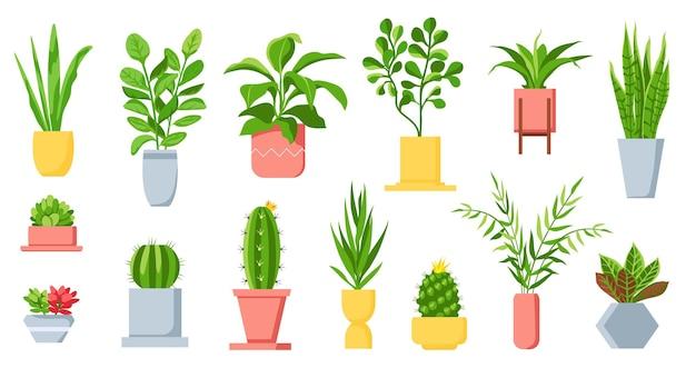 Rośliny doniczkowe. dom tropikalnych liści, drzew, sukulentów i kaktusów. miejska dżungla, domowy zielony ogród w donicach. kreskówka roślina doniczkowa wektor zestaw. soczysty kaktus, roślina doniczkowa do dekoracji wnętrz