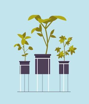 Rośliny doniczkowe ikona sadzenia koncepcji ogrodu botanicznego w szklarni