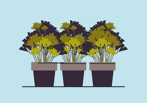 Rośliny doniczkowe zioła w doniczkach sadzenie ilustracji wektorowych koncepcji ogrodu botanicznego w szklarni