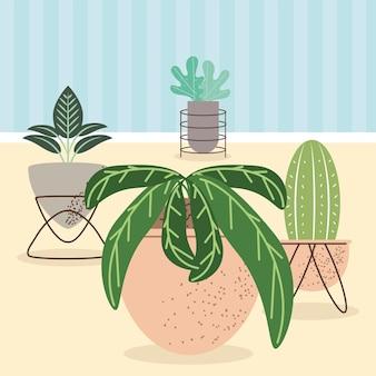 Rośliny ozdobne do wnętrz