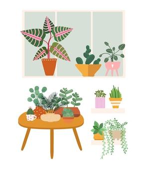 Rośliny w domu. donice ogrodowe, zielenie stoją na stole, oknie i półce. ilustracja wektorowa na białym tle zbiory elementów botanicznych. zielone ogrodnictwo, kwiatowe kwiaty i rośliny doniczkowe
