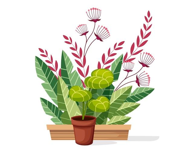 Rośliny w doniczce. roślina doniczkowa ogrodowa do wnętrz i na zewnątrz. nowoczesny i elegancki wystrój domu. ilustracja na białym tle.