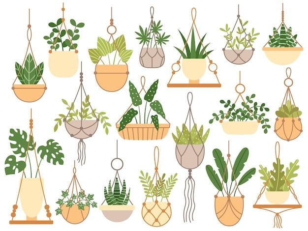 Rośliny w wiszących doniczkach. ręcznie wykonane wieszaki dekoracyjne makramy do doniczki, powiesić rośliny domowe na białym tle zestaw