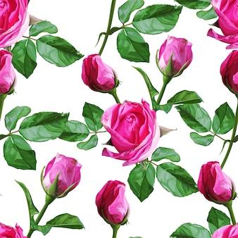 Róża bezszwowy wzór na białym tle