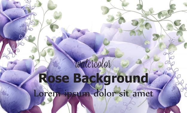 Róża kwiatów karty tła akwarela