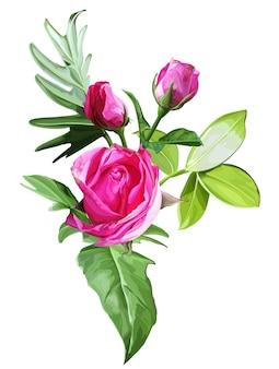 Róże i tropikalni liście odizolowywający na białym tle