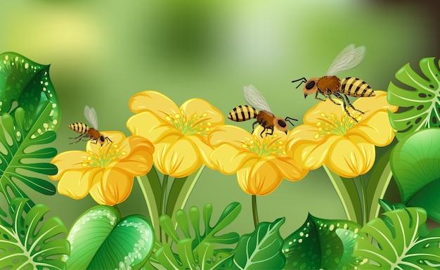 Rozmyte tło natury z wieloma pszczołami