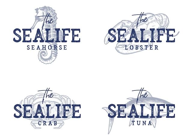 Różne cytaty życia morskiego i zbiór ilustracji
