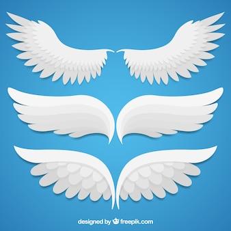 Różne fantastyczne skrzydła