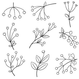 Różne jagody lub zestaw ikon wektorowych linii botanicznej kwiat