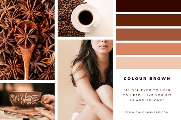 Różne kolaże fotograficzne w brązowych odcieniach
