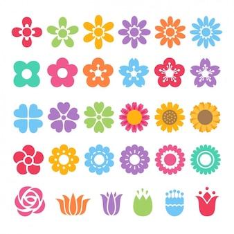 Różne kolorowe ikony