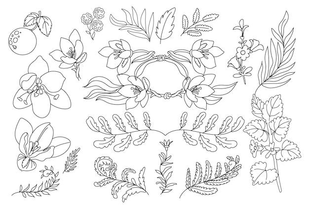 Różne ręcznie rysowane ilustracje kwiatowe linii