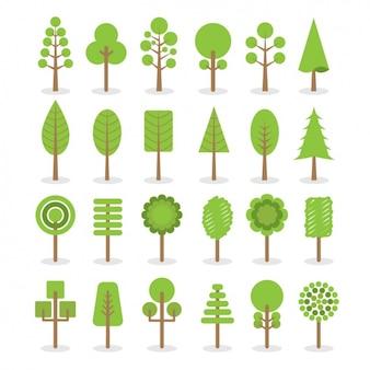 Różne rodzaje drzew