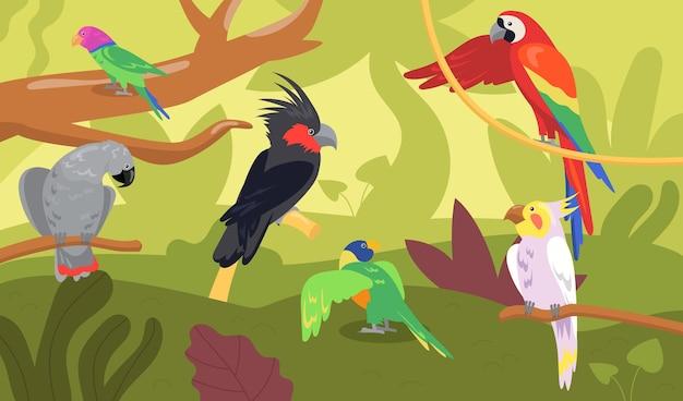 Różne rodzaje papug w lesie lub w dżungli. dzikie tropikalne ptaki, egzotyczne wielobarwne ara, płaska ilustracja kreskówka ara