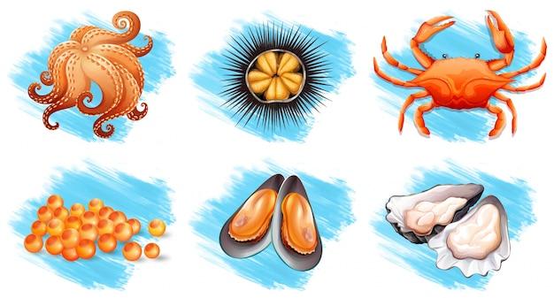 Różne rodzaje świeżych owoców morza