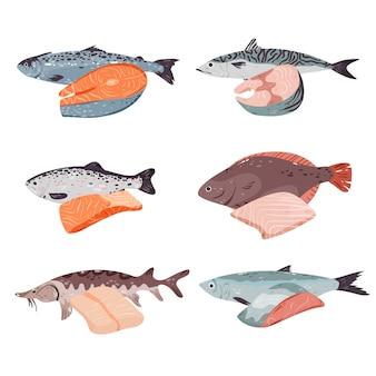 Różne ryby i zestaw filetów