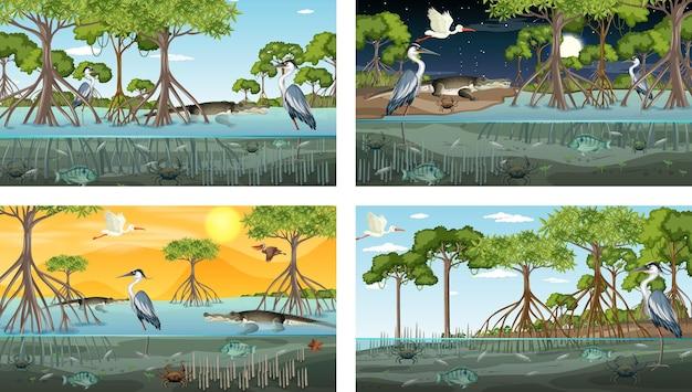 Różne sceny krajobrazu lasu namorzynowego z różnymi zwierzętami