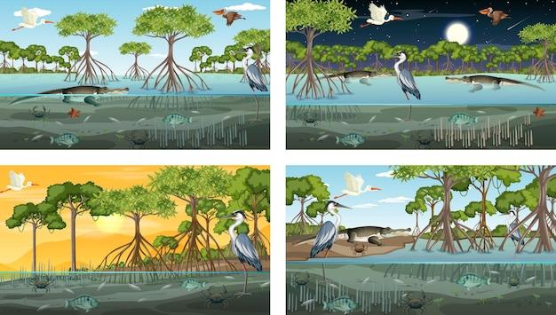 Różne sceny krajobrazu lasu namorzynowego ze zwierzętami i roślinami