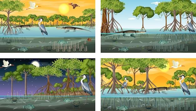 Różne Sceny Krajobrazu Lasu Namorzynowego Ze Zwierzętami I Roślinami Darmowych Wektorów