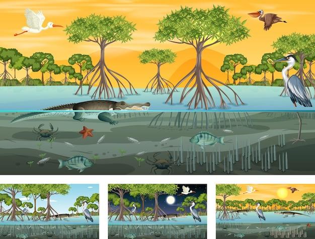 Różne sceny krajobrazu lasu namorzynowego ze zwierzętami