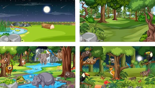 Różne sceny przyrodnicze lasu i lasu deszczowego z dzikimi zwierzętami