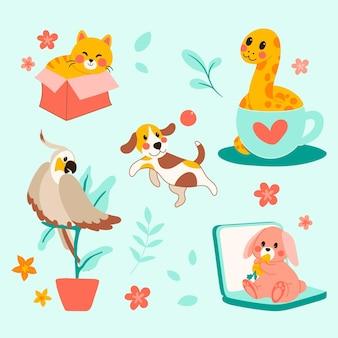 Różne zwierzęta domowe