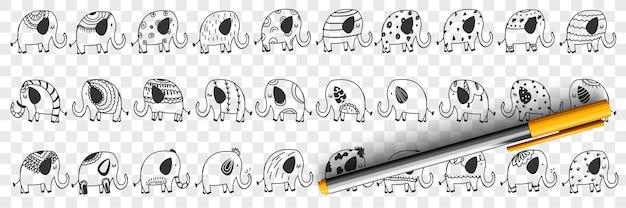Różne zwierzęta słonie doodle zestaw ilustracji