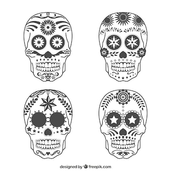 Różnorodność czaszki cukru