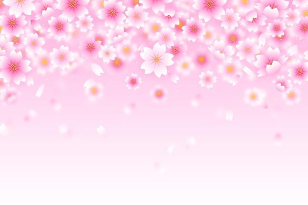 Różowe kwiaty sakura gradientowe tło
